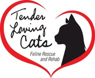 Tender Loving Cats, Inc.